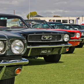 Mustang Nationals 2015 - Adelaide, Sth Australia